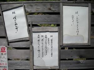 Hokkaido2009_212_2