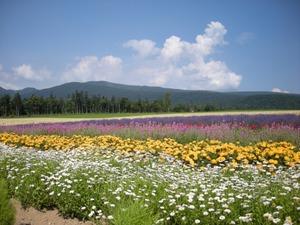 Hokkaido2009_224