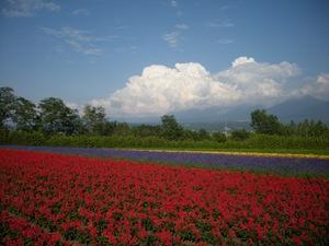 Hokkaido2009_240