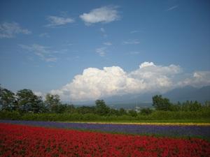 Hokkaido2009_241