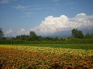 Hokkaido2009_245