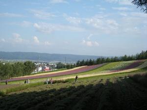 Hokkaido2009_246