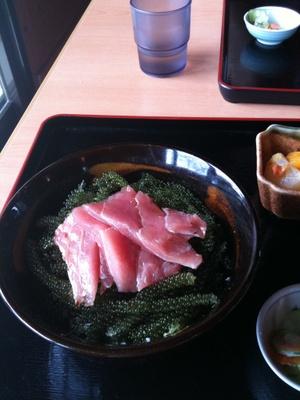 Kudaka_umibudo_don